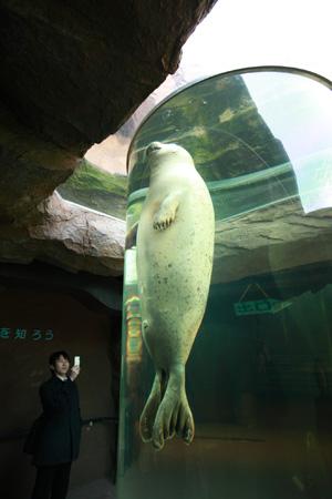 zoo_0120.JPG