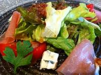 hp 1011 salad.JPG
