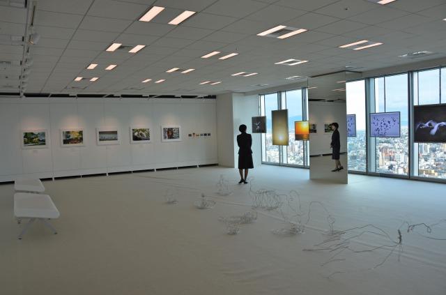 s_窓側コルトン展示2.jpg